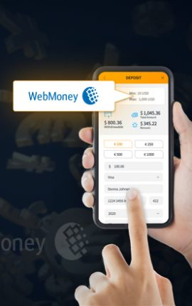 How to Use WebMoney at Jet10
